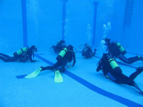 PADI Discover Scuba Diving Especialistas