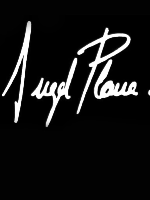 LogoProvisionalPortfolio